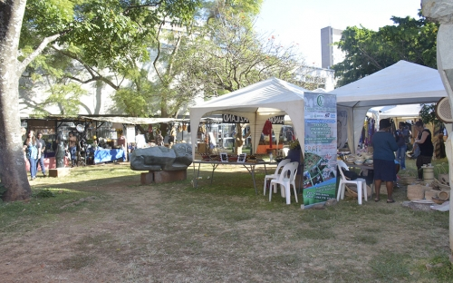 Some of the stalls available at the HIFA