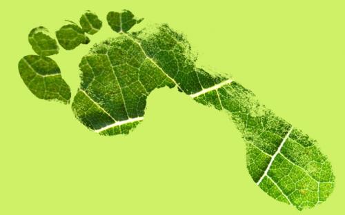 Ecological Footprint Quiz