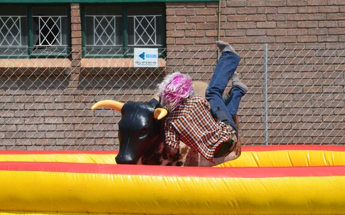Guy falls off the rodeo Bull