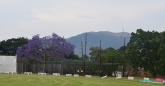 Nets at Mutare Sports Club