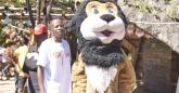 Simba the lion at HIFA