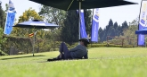 A lone supporter relaxes in the shade.